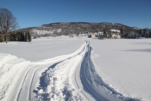 winter snow nature day slovenija rakitna