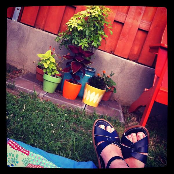 summer in the backyard