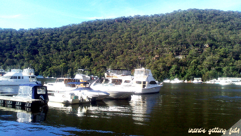 fishcafe-berowra-waters2