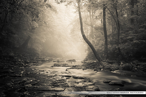 bw white black nature fog sepia canon landscape photography rainyday hiking waterfalls streams canonef1740mmf4lusm ef1740mmf4lusm canon6d