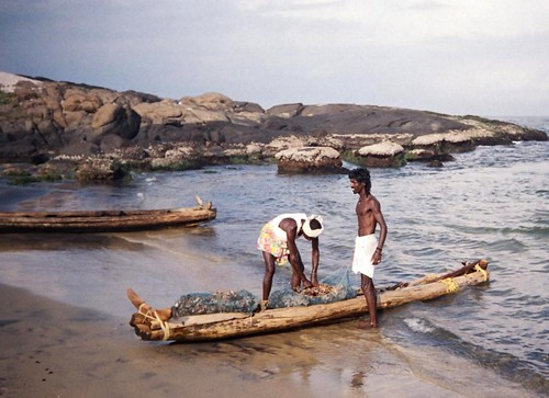The catamaram used by fishermen in the south of Kerala is a traditional boat made up of two or three logs of wood tied together with coir ropes. Small gaps are placed between the logs to allow the water to drain to reduce the impact of the waves. The smaller catamaram accomodates a crew size of 2, while the larger one can accomodate 3 to 4 people.