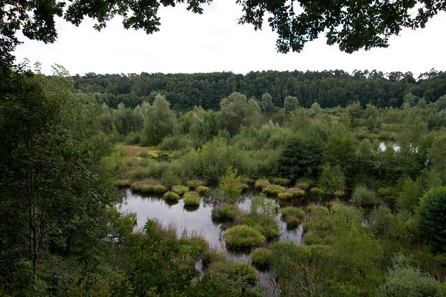 """Naturschutzgebiet """"Am Hornpottweg"""""""