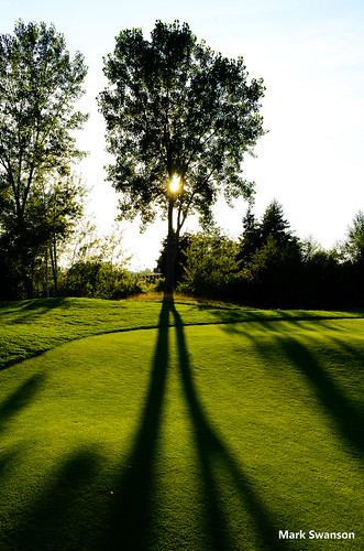 trees sunset sky color nature silhouette golf landscape nikon michigan stjoseph d5100