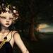 Forest by kynne L.