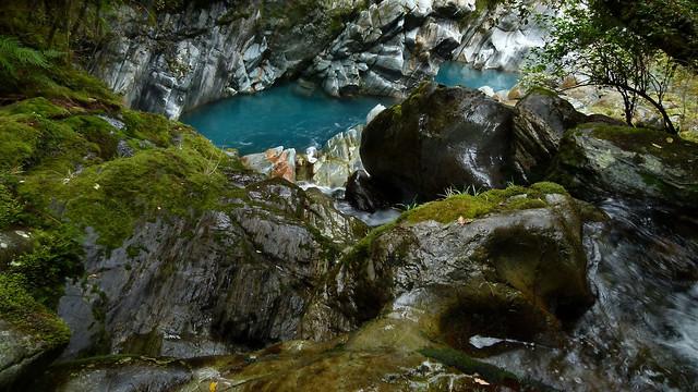 Glimpse Of A Glacial River - The Kokatahi