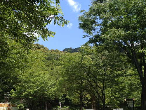 岐阜公園から金華山を望む
