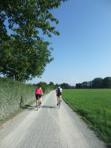 Cycle way in Germany