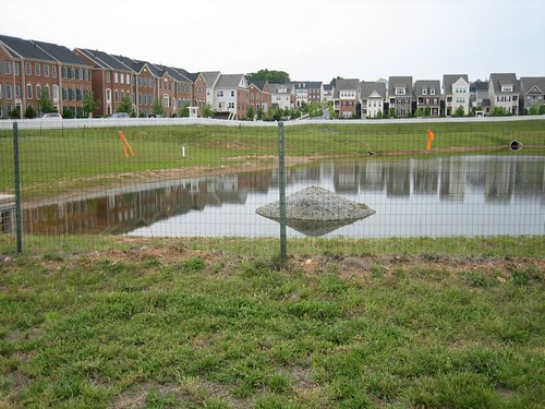 Image of a wet pond in front of a row of townhomes.