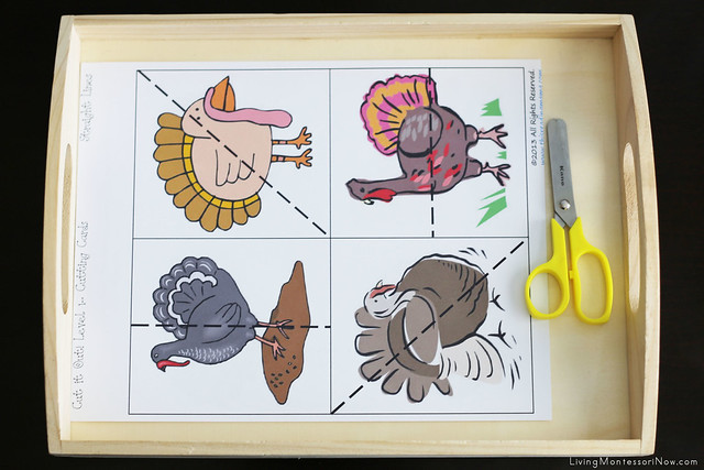 Free Turkey Printables And Montessori Inspired Activities