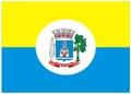 Bandeira da cidade de Santarém