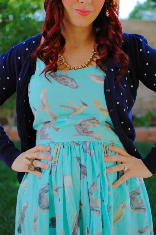 bird dress2