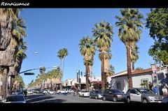 棕榈泉的阳光 - Sunshine at Palm Springs