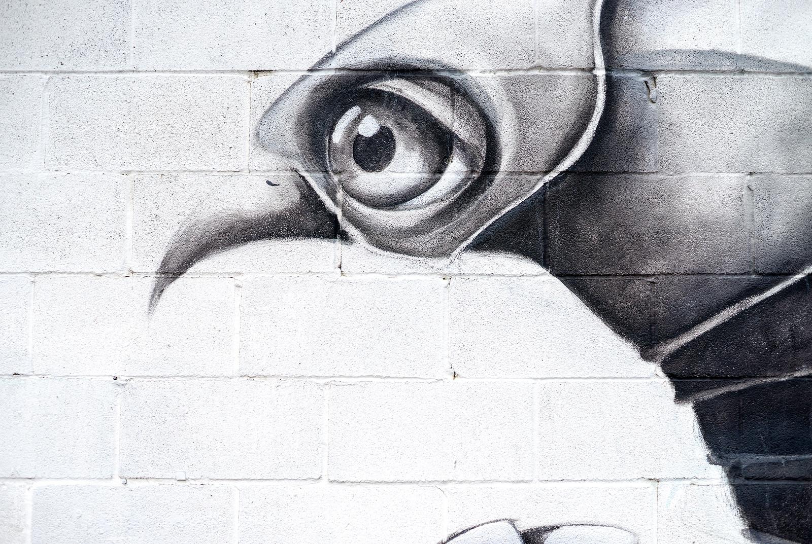 Ana Maria Graffiti Ana Maria Detail Close up
