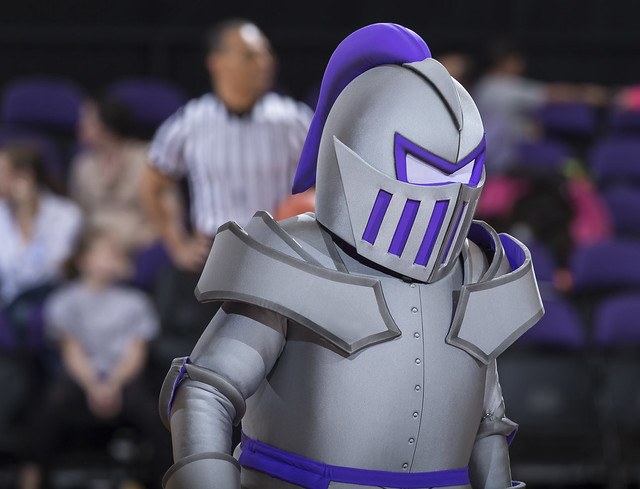 Furman Paladins New Mascot | Flickr - Photo Sharing!