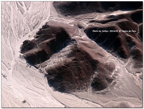 Nazca-21