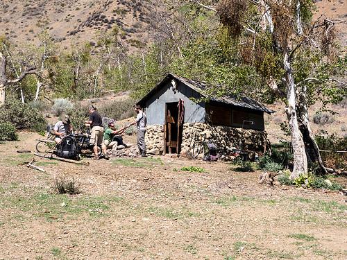 Willet cabin