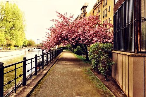 walking next to the Spree