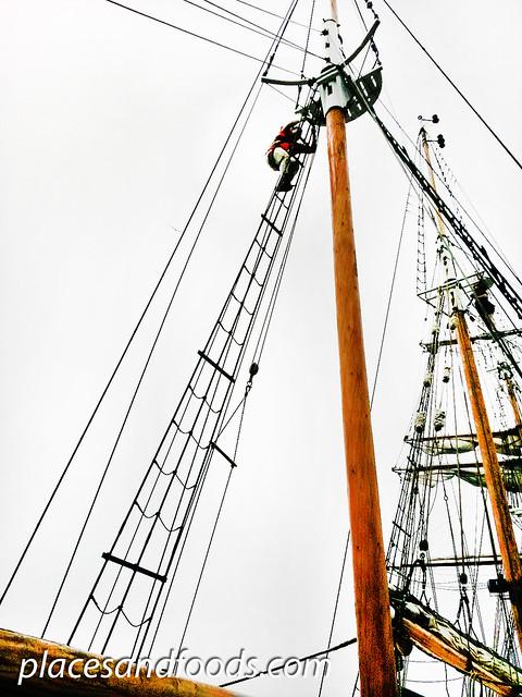sydney tall ship climbing mast