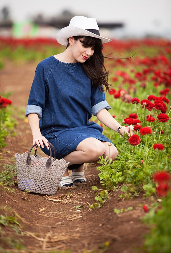 קטיף נוריות קדמה ,בלוג אופנה, שמלת ג'ינס, סלסלה, כובע, קטיף נוריות, שדה פרחים, hat, ranunculus field, basket bag, denim dress, espadrilles, picking flowers