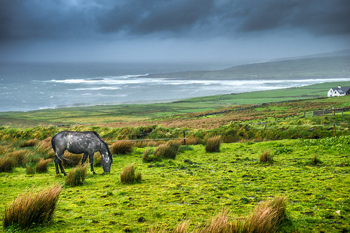 travel ireland sea sky horse white house grass clouds dark landscape geotagged photography countryside photo europe clare sony cliffs hills portfolio onsale wheater moher liscannor sonya7 sel2870
