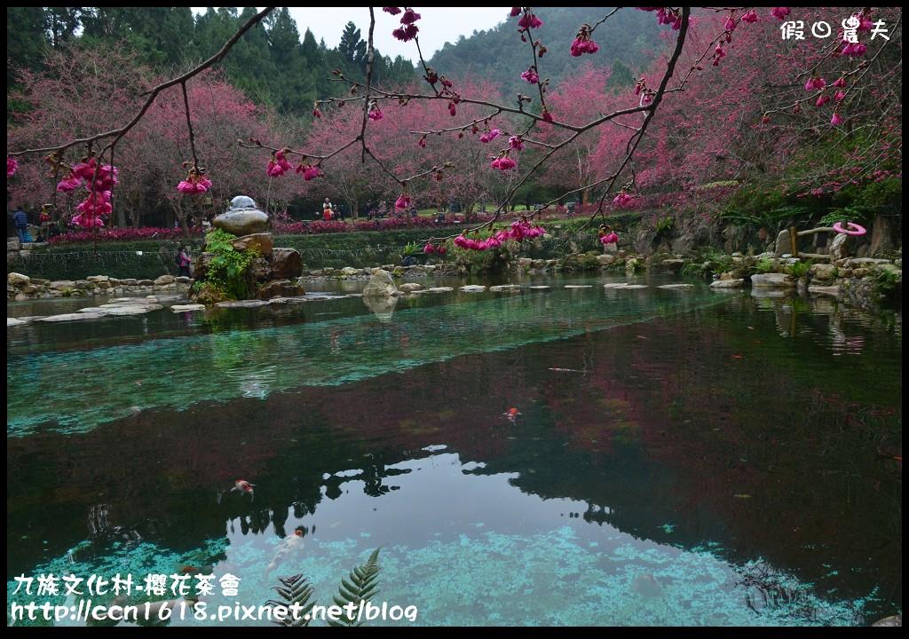 九族文化村-櫻花茶會DSC_4635