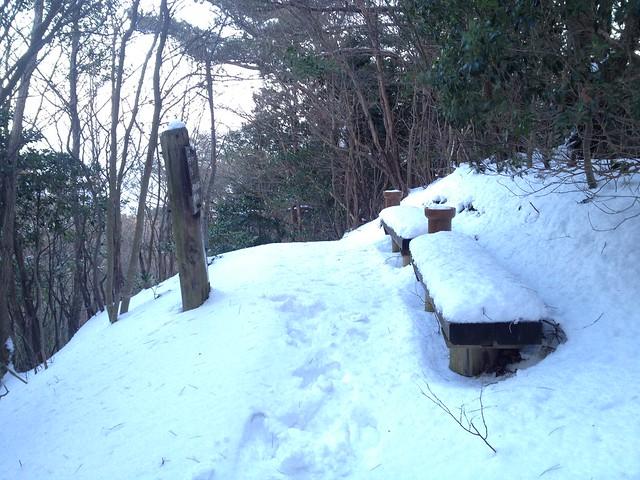 志津山 養老山頂登山道 ベンチ