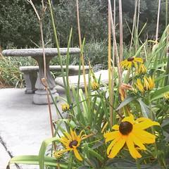 West Virginia Welcome Center #westvirginia #reststop #restarea #flowers #table 184/365 #project365 #365