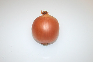 01 - Zutat Zwiebel / Ingredient oniona