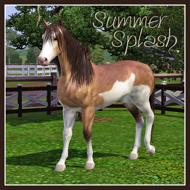 Summer Splash - covershot 01