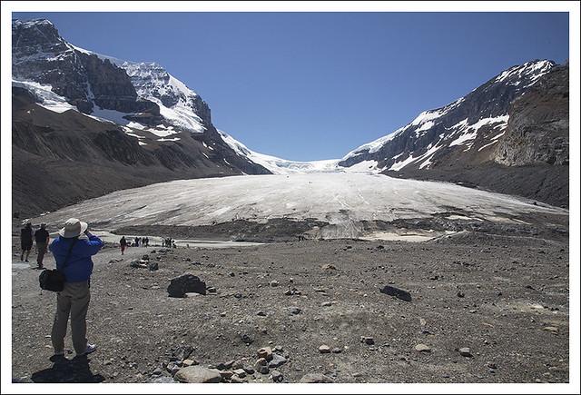 Columbia Icefield 8