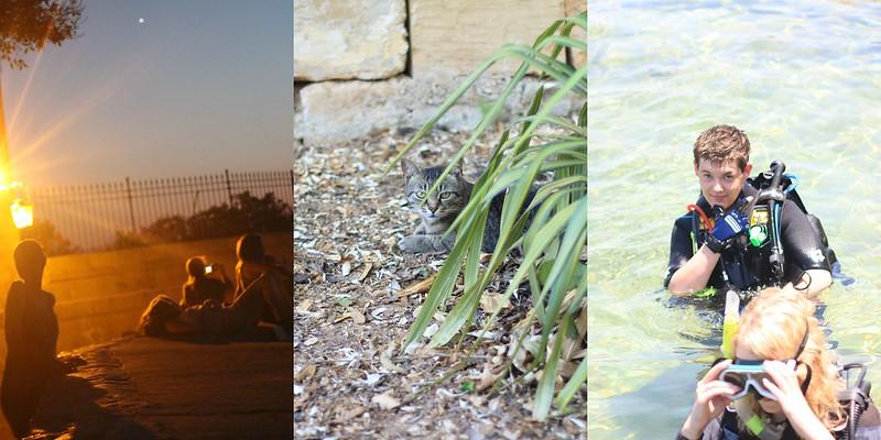 PicMonkey Collagelölö