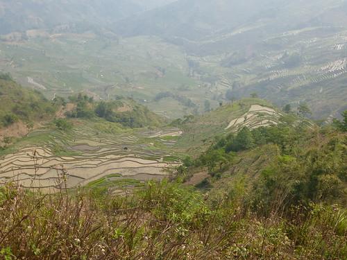 Yunnan13-Yuanyang 22 (4)