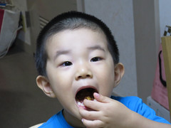 新コンデジで試し撮りとらちゃん 2012/8