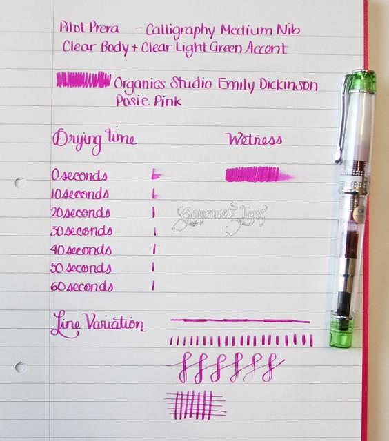 Gourmet Pens Review Pilotpenusa Prera Clear Fountain