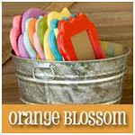 Orange Blossom Shop Button