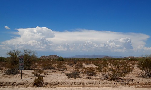 arizona sky clouds landscape desert vegetation sonorandesert southwesternunitedstates americansouthwest maricopacounty buckeyeaz maricopacountyaz buckeyehills buckeyehillsrecreationarea buckeyehillsregionalpark