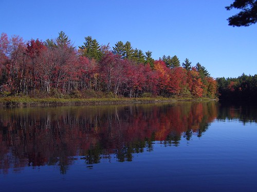 2013_0928Ossipee-River-Foliage0009 by maineman152 (Lou)