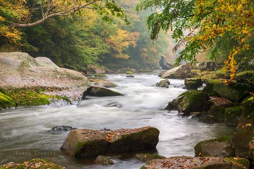 autumn fall creek river moss pentax pennsylvania pa boulders limited k5 mcconnellsmill da40 da40mm mcconnellsmillstatepark k5ii pentaxk5ii