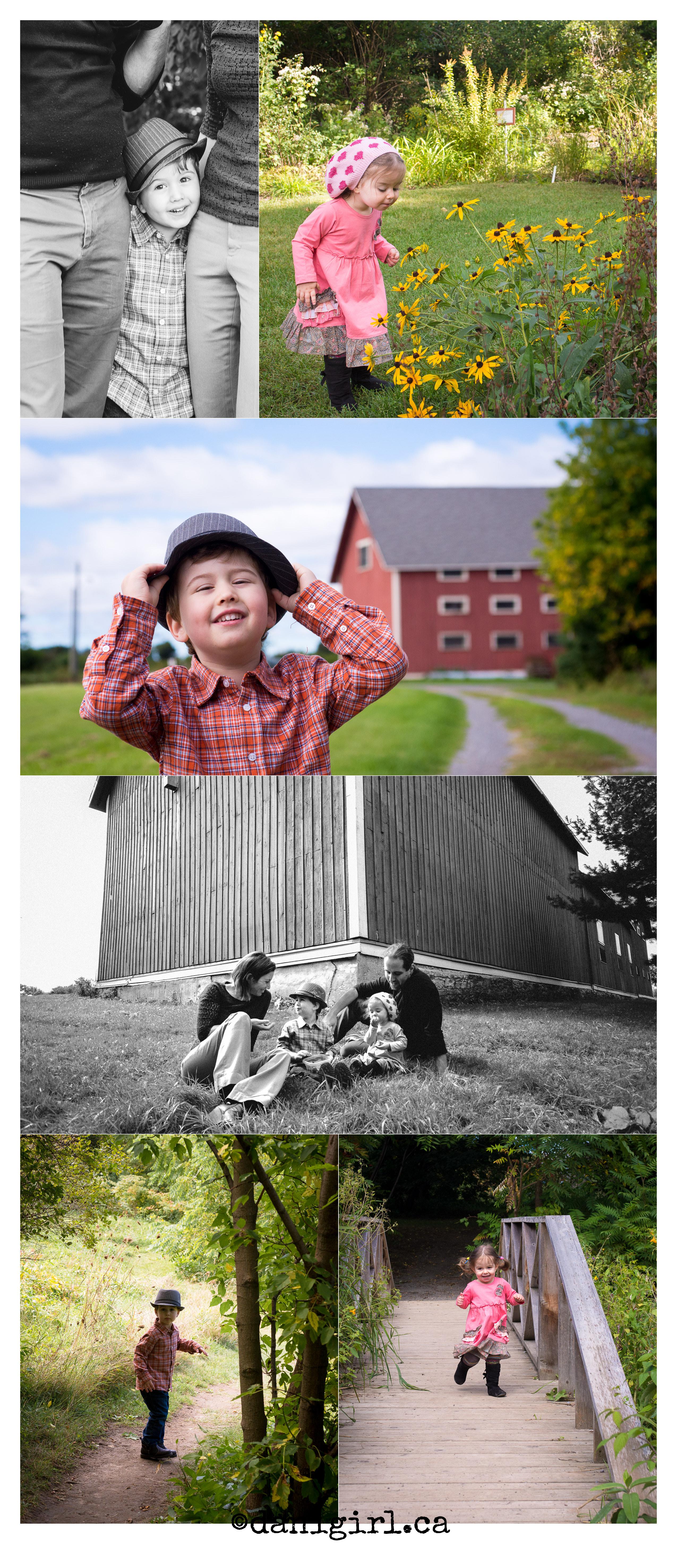 家庭野餐和在公园散步的摄影故事