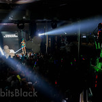 Groove-Cruise-LA-2013-Rabbits-Black (60)