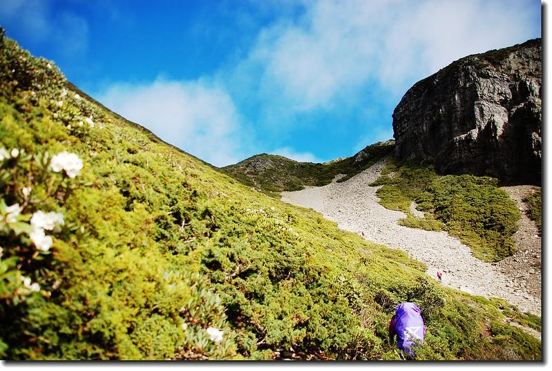 陡升(右為凱蘭特崑山) 1