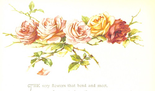 Image taken from page 18 of 'Rose Leaves. [A collection of poems on roses, with coloured illustrations.]'