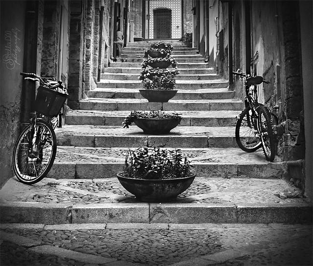 © Foto by StellaDM.Photography - http://blog.libero.it/StellaDMphoto - VIETATO PRELEVARE, COPIARE, MODIFICARE E POSTARE SU ALTRE PIATTAFORME IN RETE! - Creative Commons License