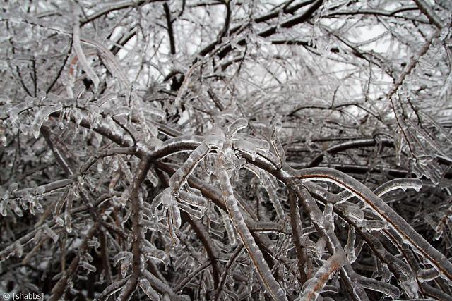 Ice Storm 2013 11502692416_4a504d57a1_z
