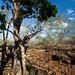 170413_Cenotes buceo_6 por Teo Robles Contreras