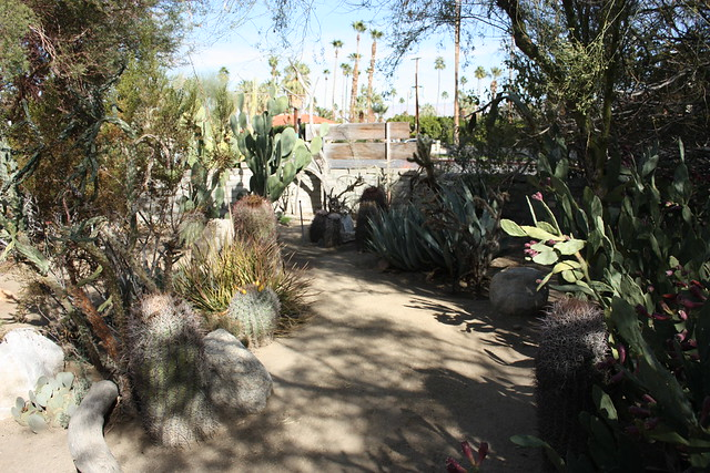 Moorten Botanical Garden, Palm Springs, California