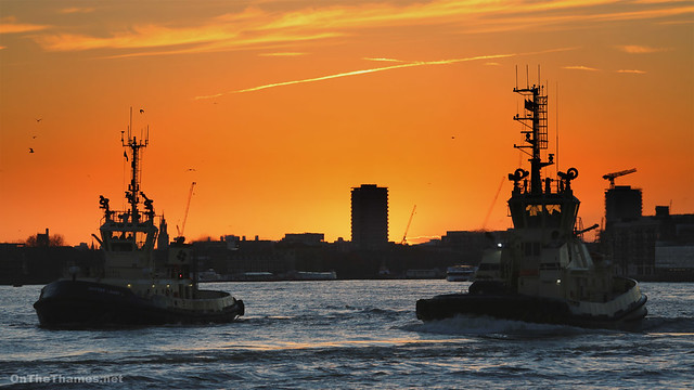 Two tugs at sunset