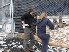Black Bear Release #2:  January 27, 2014