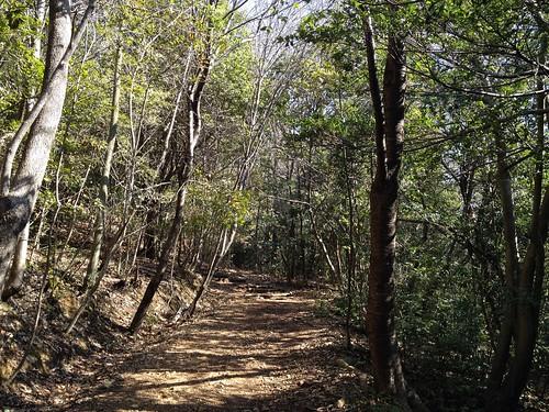 蘇原自然公園遊歩道