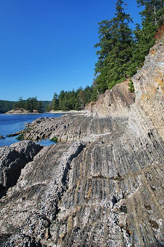 Ancient Sedimentary Rock pushed up vertically by Tectonic forces in Beaumont Marine Park, South Pender Island, Gulf Islands National Park, British Columbia